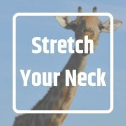 Neck stress feature
